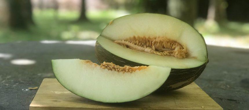Melón con bonito en escabeche… Original y sanísima combinación