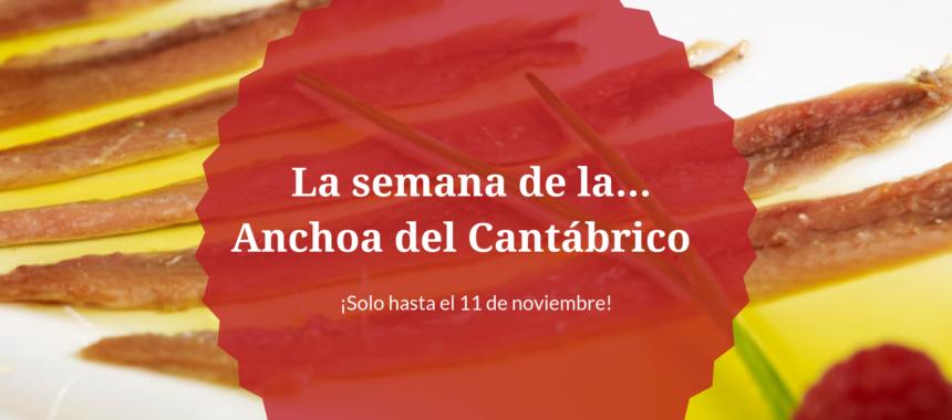 Anchoas del Cantábrico: ¡Descúbrelas al mejor precio!