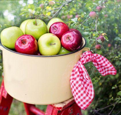 Beneficios de la manzana, para la diarrea y el estreñimiento