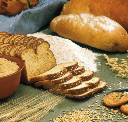 Tipos de harina: harina de avena