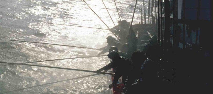 En Serrats elegimos la pesca sostenible, ¿y tú?