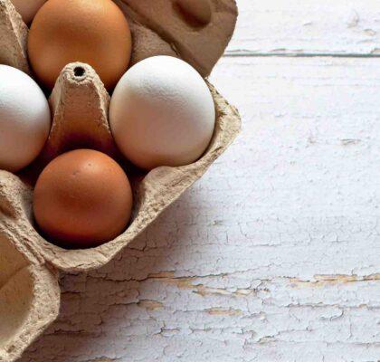 Día del Huevo. Huevos de distintos colores en una huevera